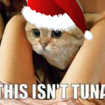 File:Christmas Tuna.png