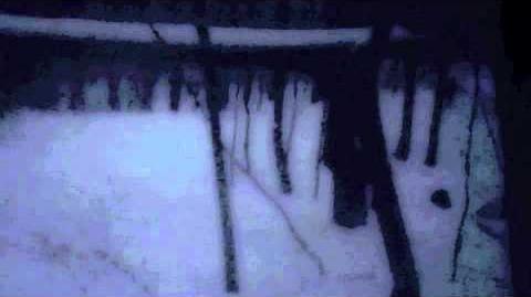 """Footage """"NIL (2009) Pt"""