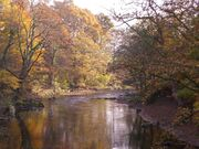 River Goyt in Woodbank Park - geograph.org.uk - 730720