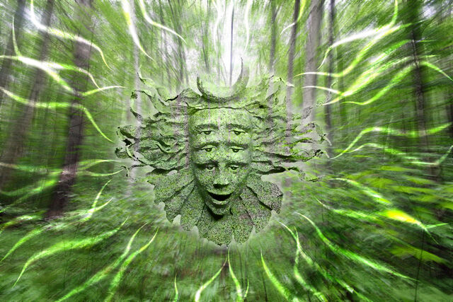 File:Shpongle Woods by lokispace.jpg