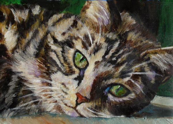 File:Brown-tabby-cat-mary-jo-zorad.jpg