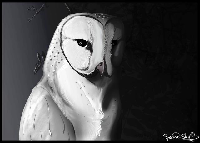 File:Owl Reaper.png