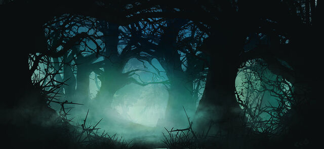 File:Creepy forest by FisHgRiNd.jpg