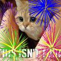 Thumbnail for version as of 22:36, November 30, 2014