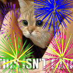File:New Years Tuna.png