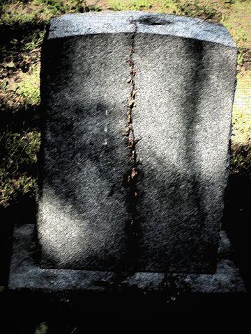 File:Grave vine.jpg