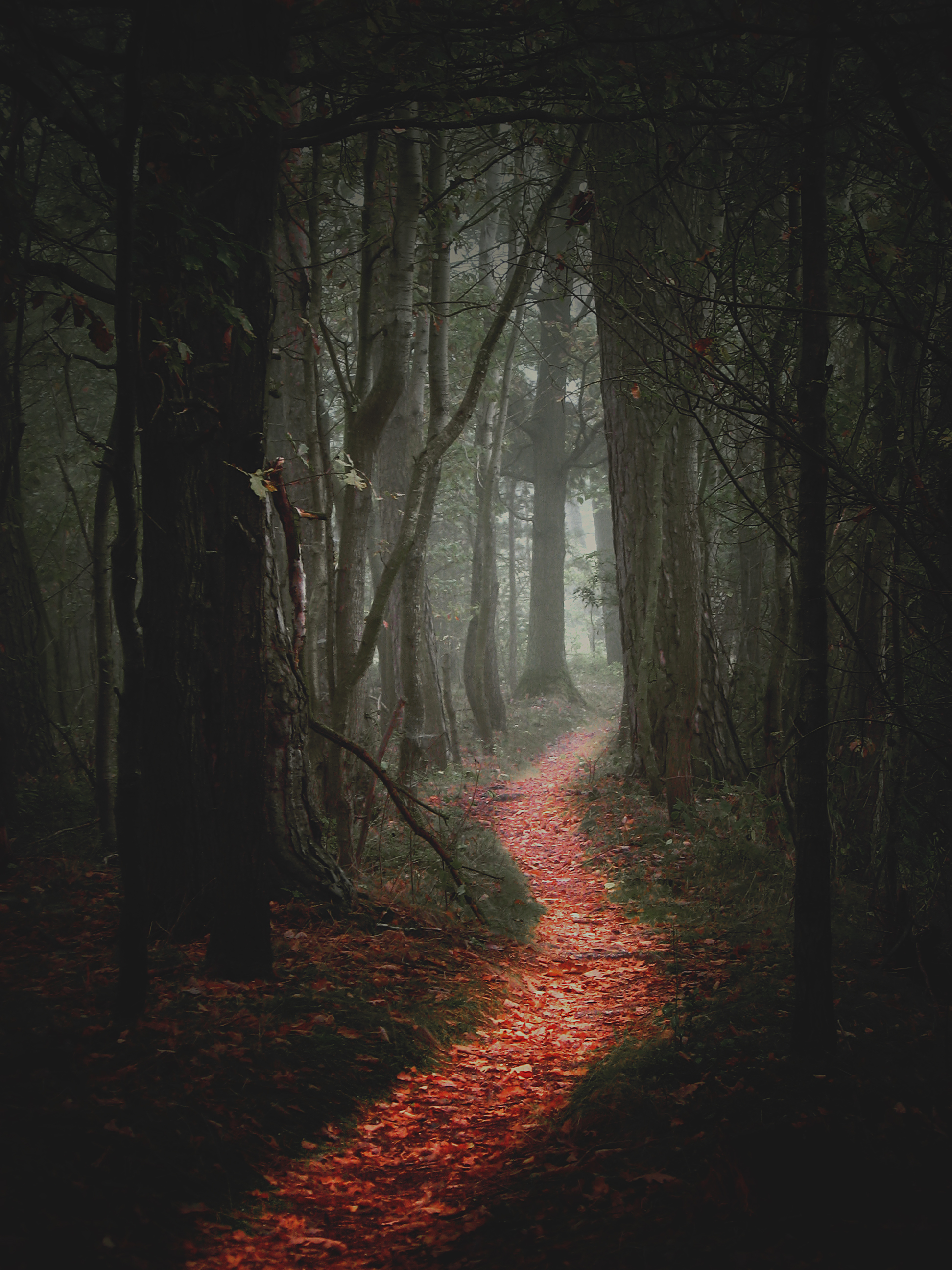 File:Path 1 on Latest Creative Writing Prompts 2