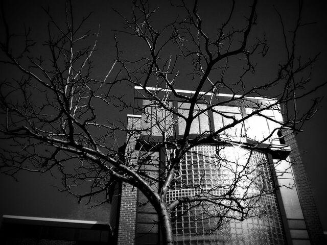 File:Haunted school by ScarletSayvia.jpg