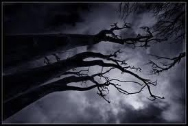 File:Darkness-0.jpg