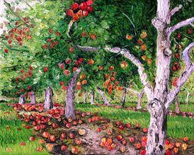 Apple orchard 2 jpg resized