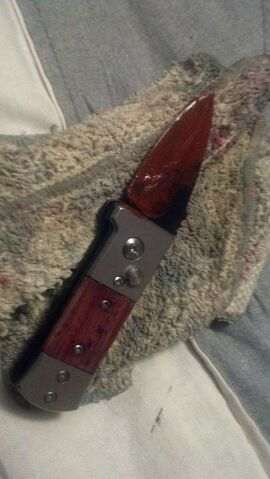 File:Evin's knife.jpg