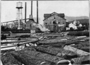 Meadow river lumber mill