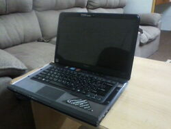 Holder of Data Black Laptop