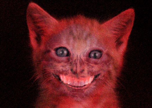 File:Smilecat.jpg
