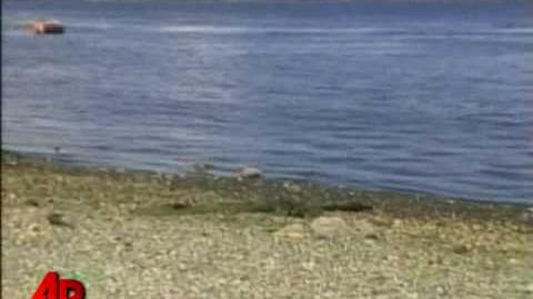 Another Foot Found Off Canada's Pacific Coast