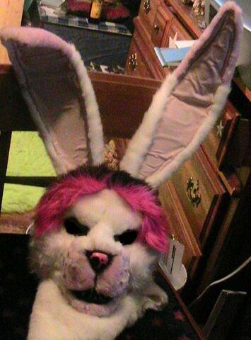 File:Bunny-mask-edited.jpg