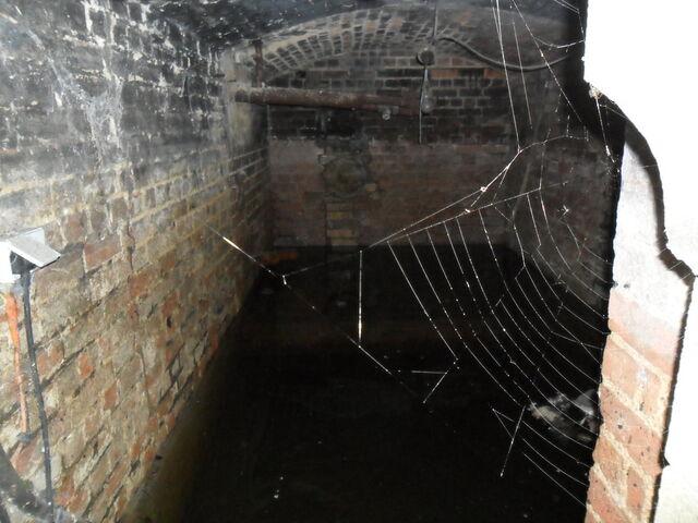 File:Church Cellar by DeadParrot2512.jpg