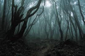 File:Trees-0.jpg