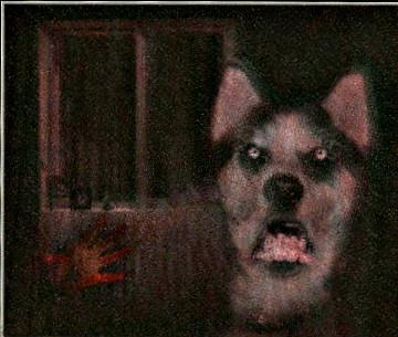 File:Frowndog enhanced-1.jpg