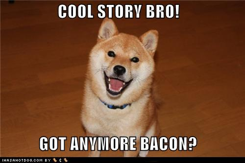 File:Funny-dog-pictures-cool-story-bro-got-anymore-bacon.jpg