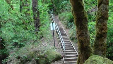Trail16