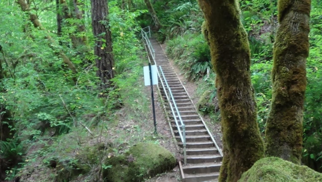 File:Trail16.png