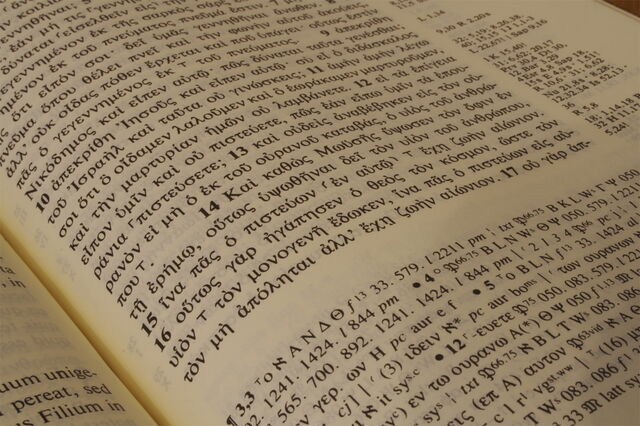 Ficheiro:Book-1556.jpg