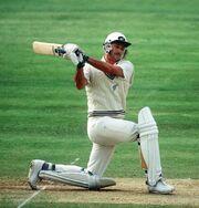 365-days-cricket-Richard-Hadlee