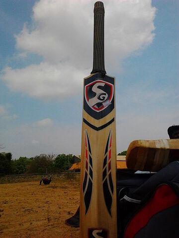 File:450px-A modern Cricket bat (back view).jpg