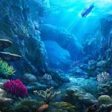 File:UnderwaterCoral.png