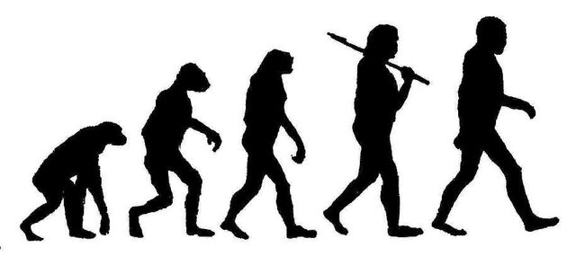 File:Evolution-1.jpg