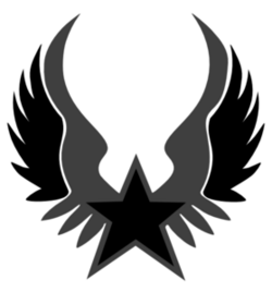 Black-and-grey-star-emblem-md