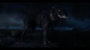 Deathhound