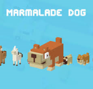 Marmalade Dog