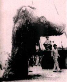 Tecolula Monster