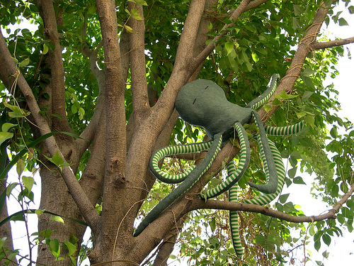 Is The Endangered Tree Octopus Real | Tree Repulseweb.net