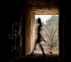 Shadow-people (1)