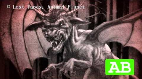 The Top 5 Cryptids of North America