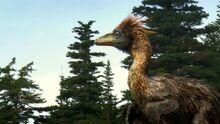 Troodon-0