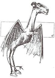 200px-Jersey Devil Philadelphia Post 1909