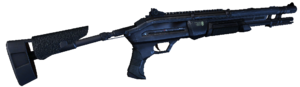 Shotgun 1