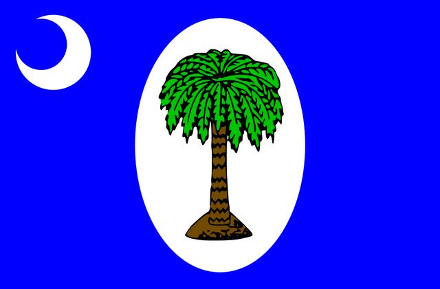 File:SouthCarolinaFlag3-OurAmerica.png