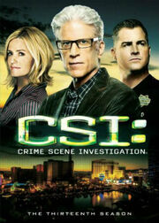 CSI Crime Scene Investigation, Season 13
