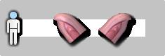 Pig ear