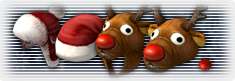 Santa hat.png