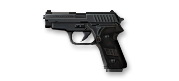 P228.png