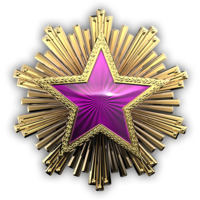 Csgo-service medal 2016 5
