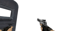 V deagle shield