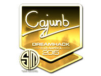 Csgo-cluj2015-sig cajunb gold large