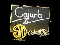 Csgo-col2015-sig cajunb large